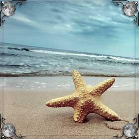 Стоять на берегу моря