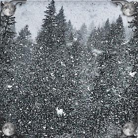 Талая вода от снега