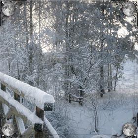 Талый снег