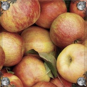 Украсть яблоко