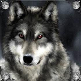 Укусил волк