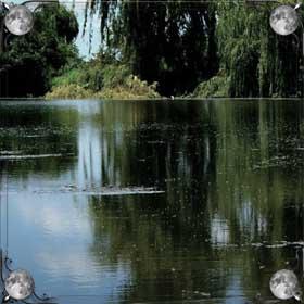 Упасть в пруд