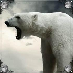 Увидеть медведя