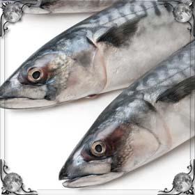 Ведро с рыбой