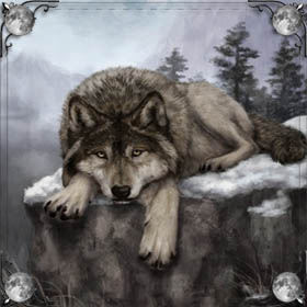Волк и медведь