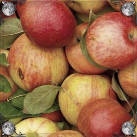 Яблоки с виноградом