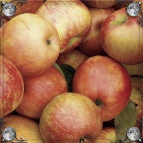 Яблоки в пироге