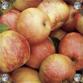 Яблоко с червями