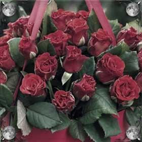 Засохшая роза
