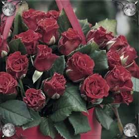 Завядшие розы
