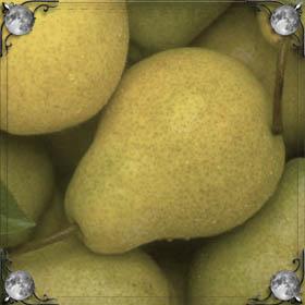 Желтые груши